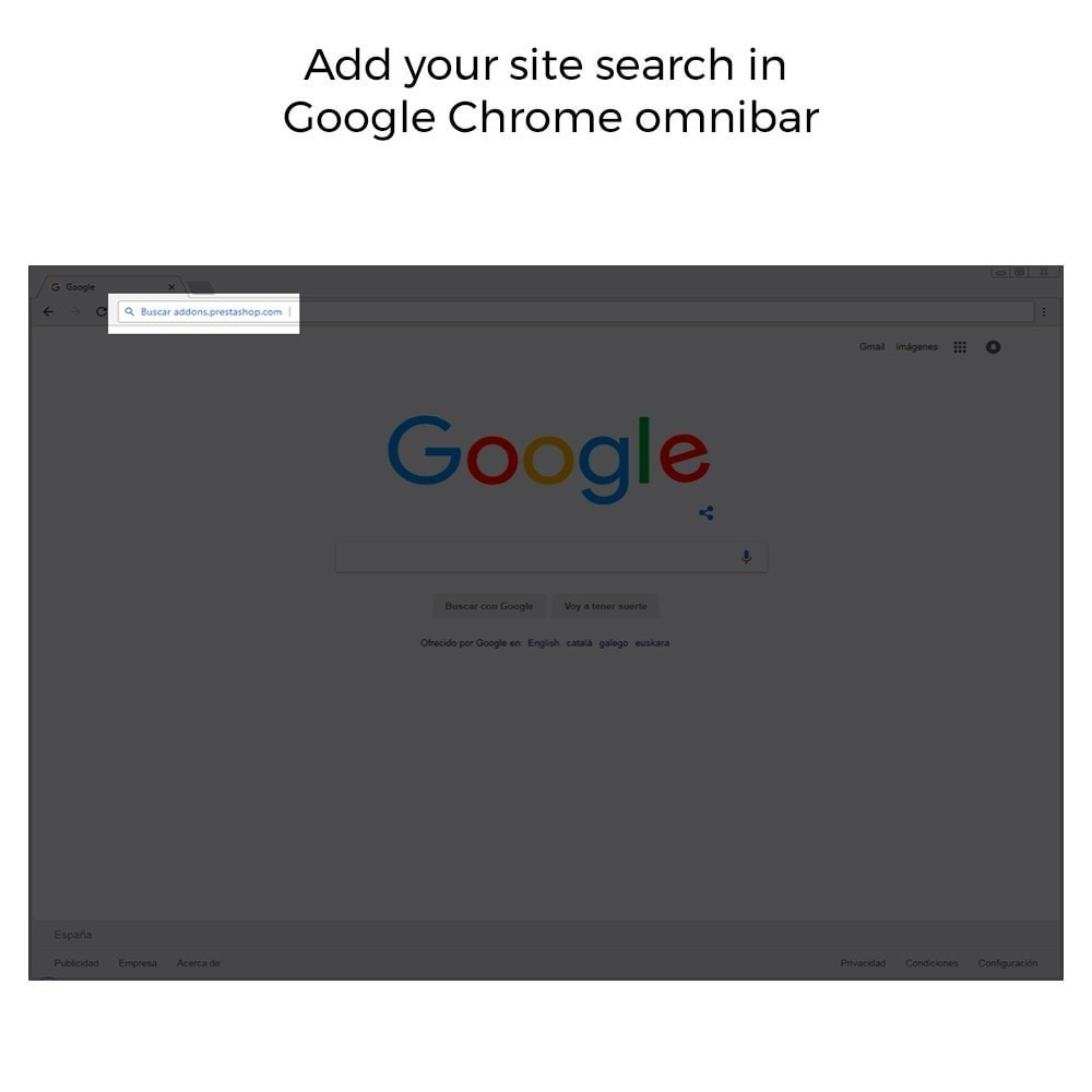 module - Естественная поисковая оптимизация - Google Sitelink Searchbox - 4
