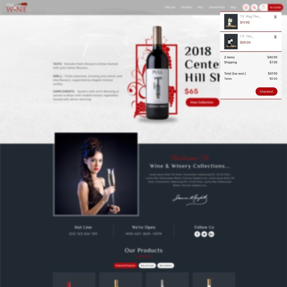 theme - Boissons & Tabac - TheWine - Wine Store - 7
