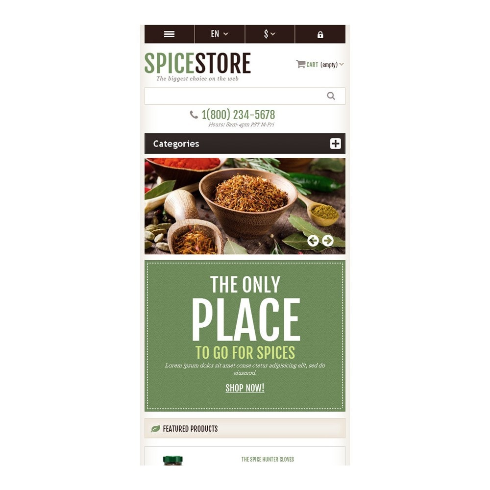 theme - Food & Restaurant - Responsive Spice Store - 9