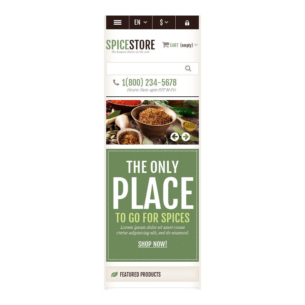 theme - Food & Restaurant - Responsive Spice Store - 10