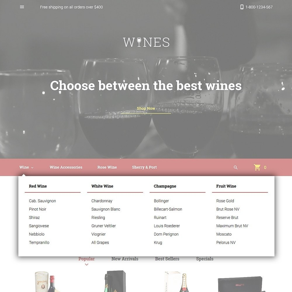 theme - Alimentation & Restauration - Wines - Wine Store - 4