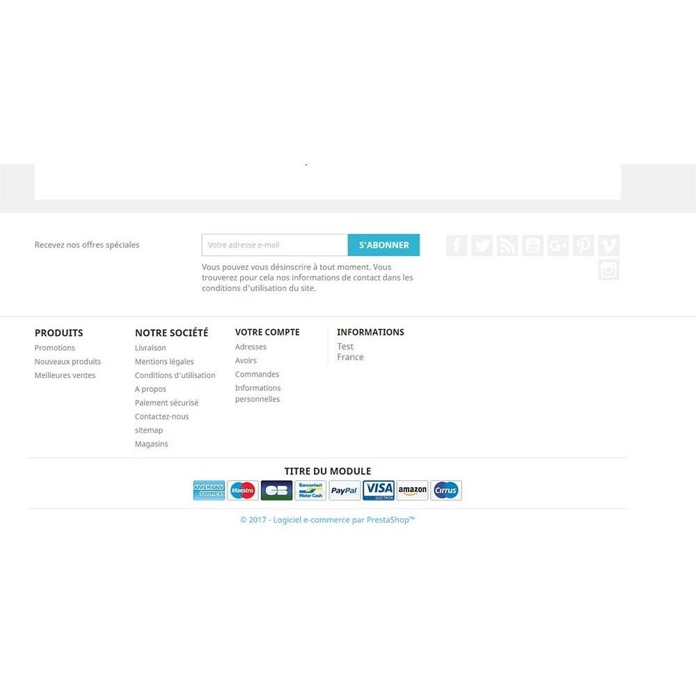 module - Бейджи и Логотипы - Payment logo footer - 3