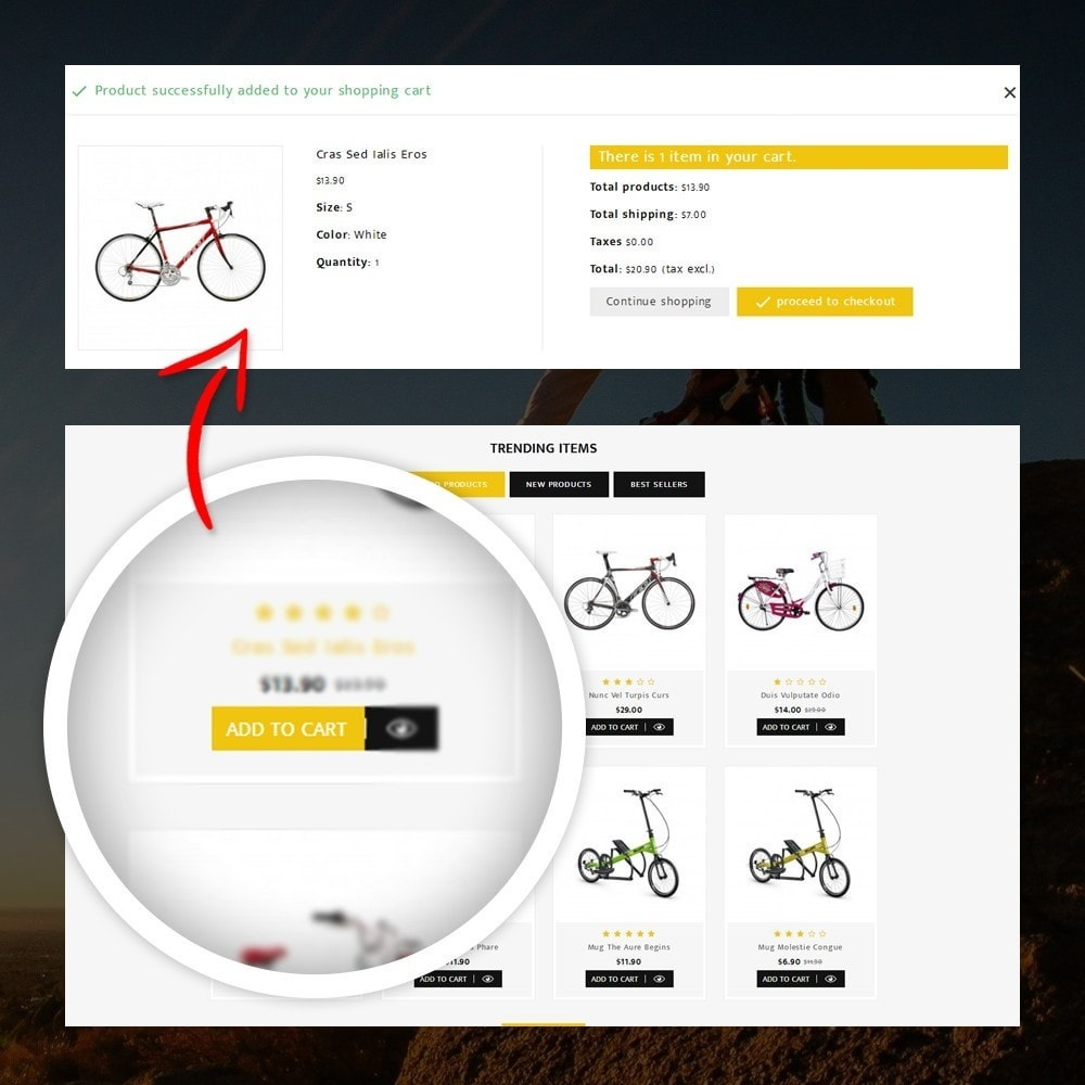 theme - Desporto, Actividades & Viagens - Sneaps - The Bicycle Store - 5