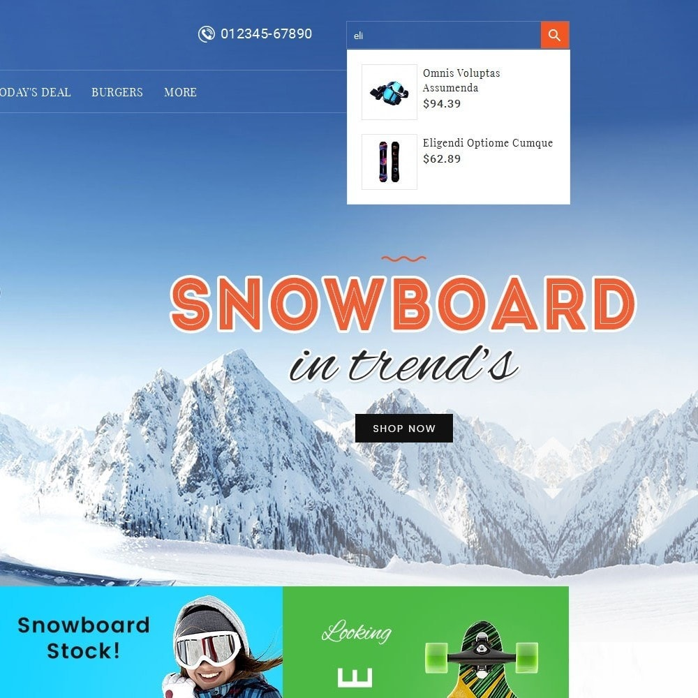 theme - Спорт и Путешествия - Ski & Snow Boards - 9