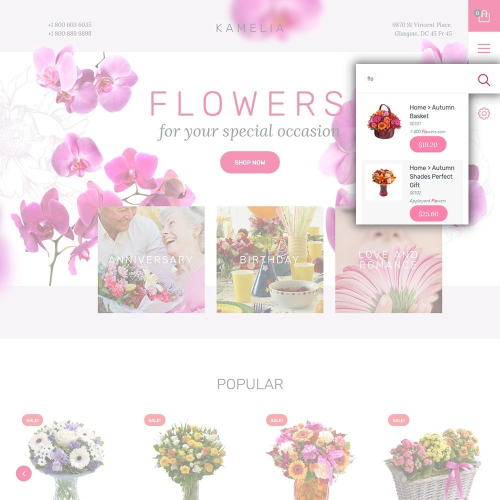 theme - Gifts, Flowers & Celebrations - Kamelia - 6