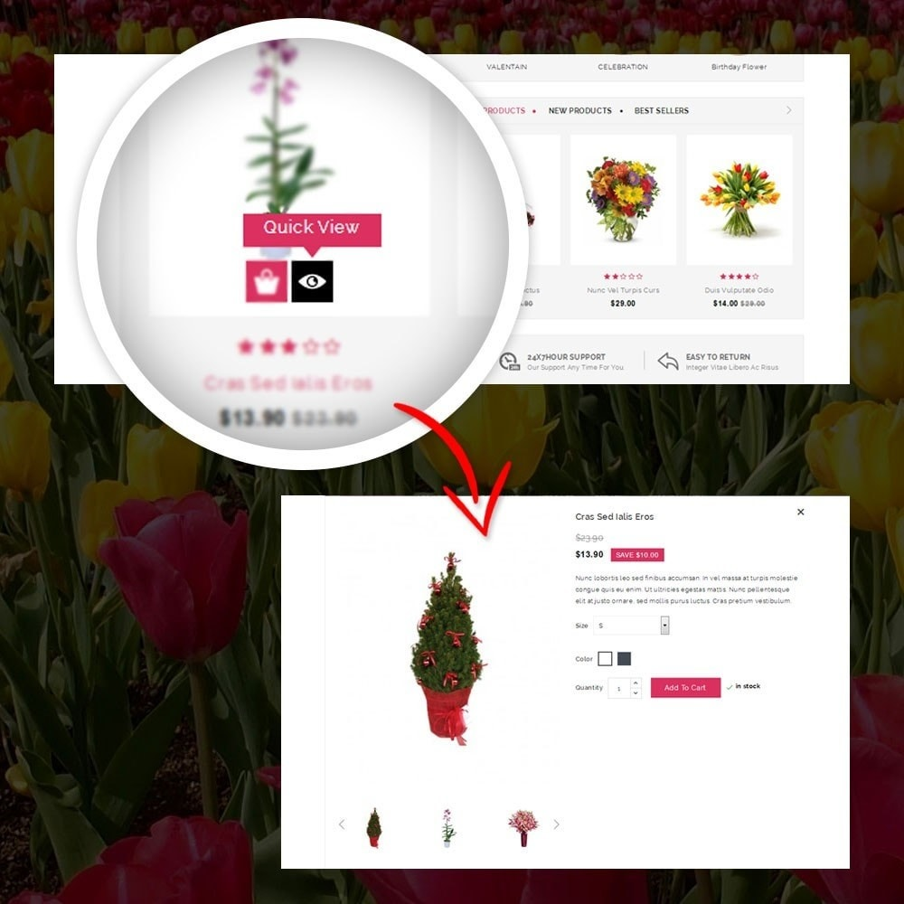 theme - Cadeaux, Fleurs et Fêtes - Royal - Flower Store - 8