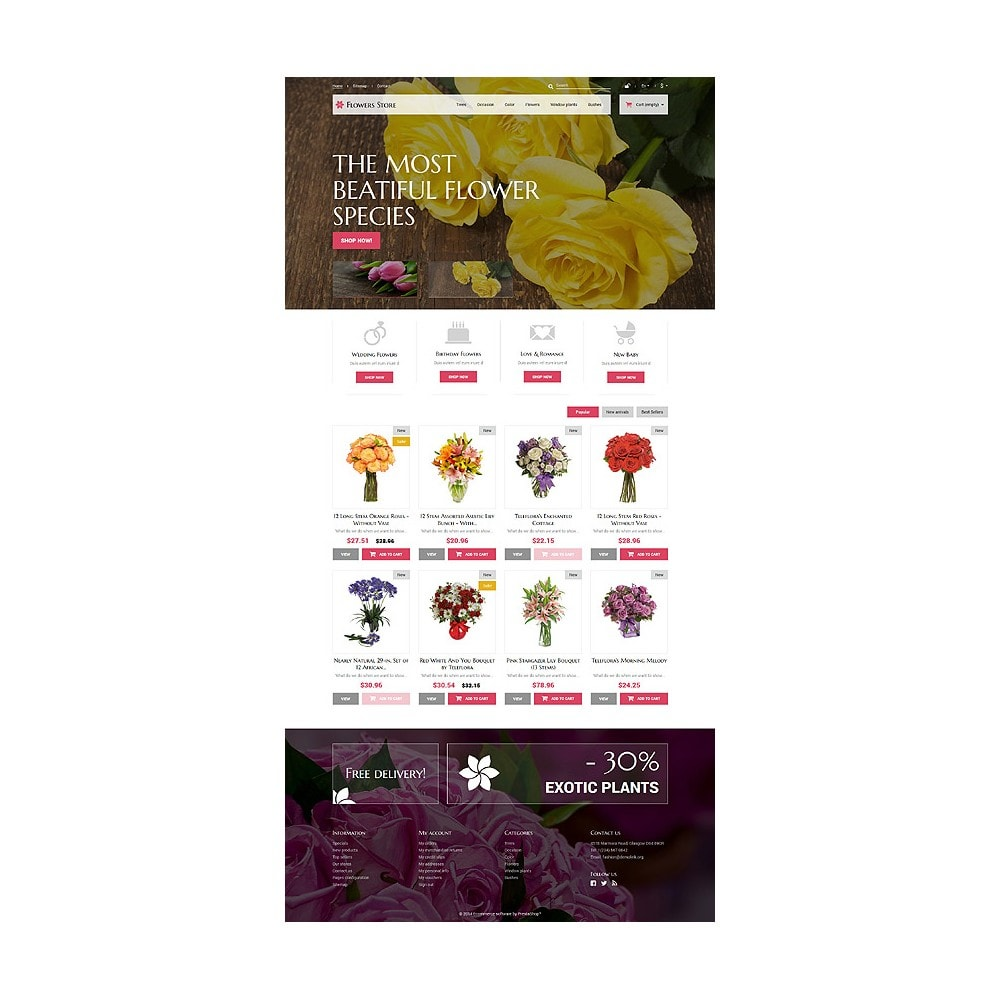 theme - Cadeaux, Fleurs et Fêtes - Fleurs pour des occasions spéciales - 10