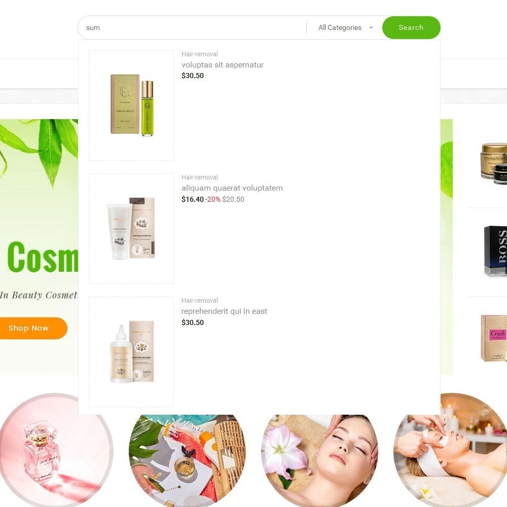 theme - Gesundheit & Schönheit - Mega Shoppe Bio Cosmetics - 11