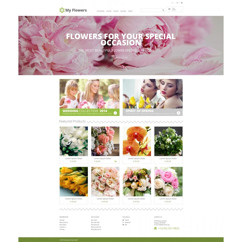 theme - Cadeaux, Fleurs et Fêtes - Bouquet Design Studio - 4