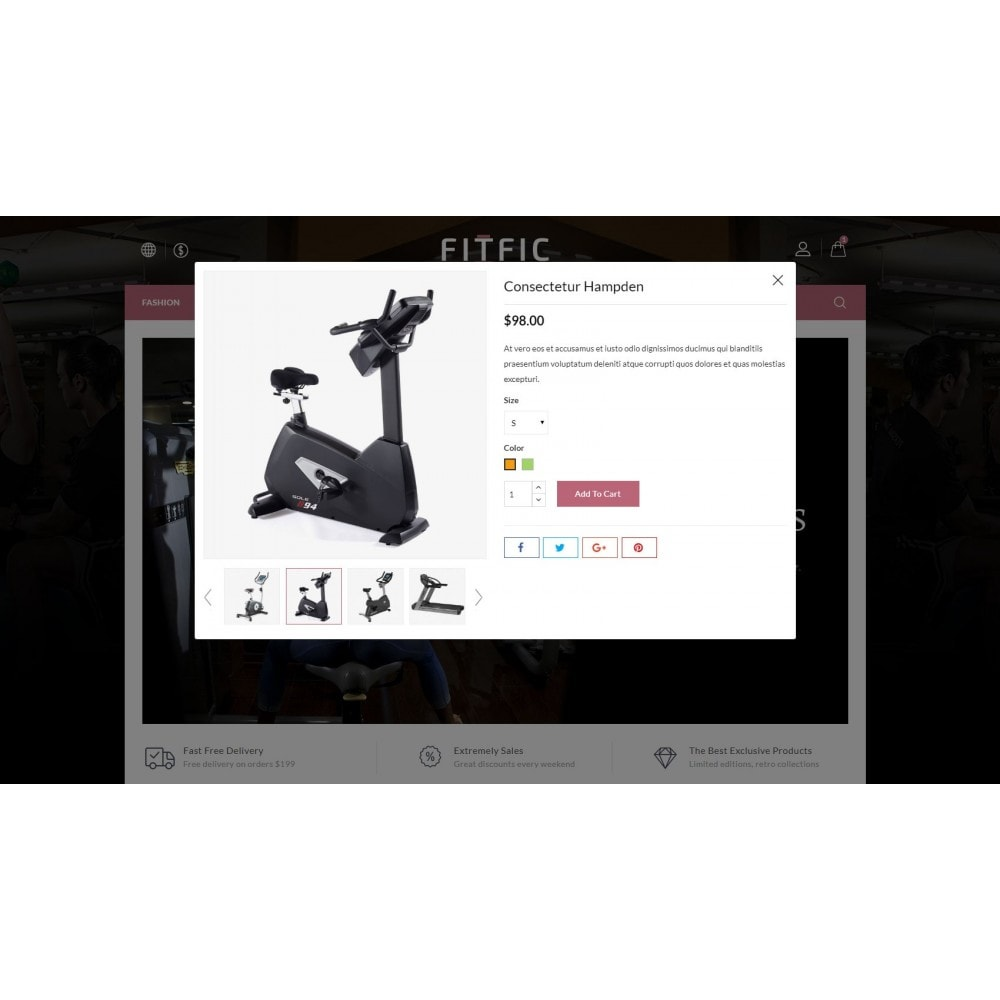 theme - Salud y Belleza - FitFic - Fitness Store - 6