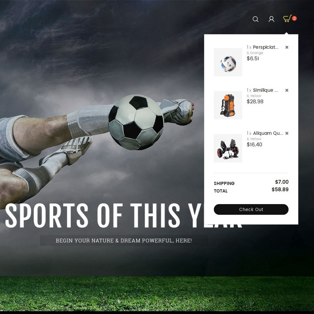 theme - Sport, Attività & Viaggi - Sports Store - 10