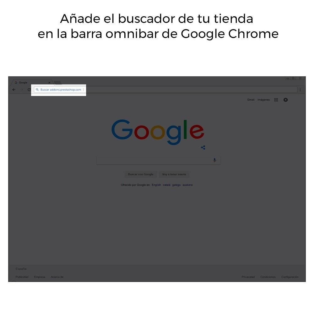 module - SEO (Posicionamiento en buscadores) - Google Sitelink Searchbox - 4