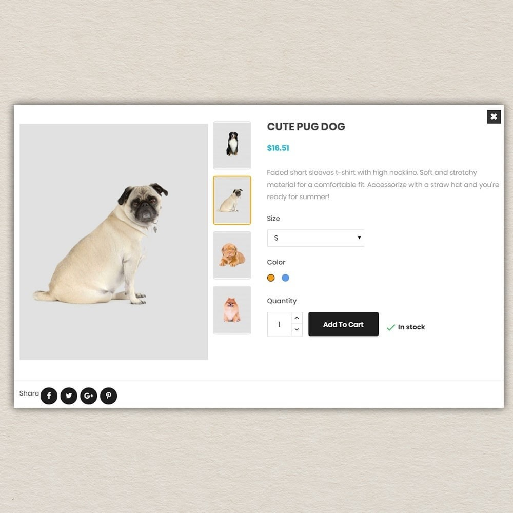 theme - Animales y Mascotas - Tienda de mascotas - 7