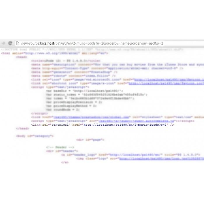 module - URL y Redirecciones - Canonical URL PRO - 2