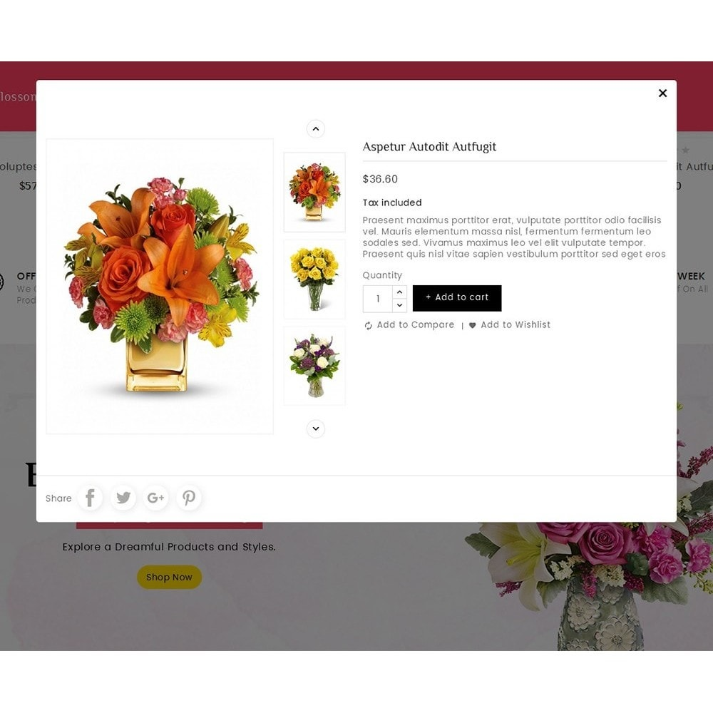 theme - Gifts, Flowers & Celebrations - Florist Blooming Art - 8