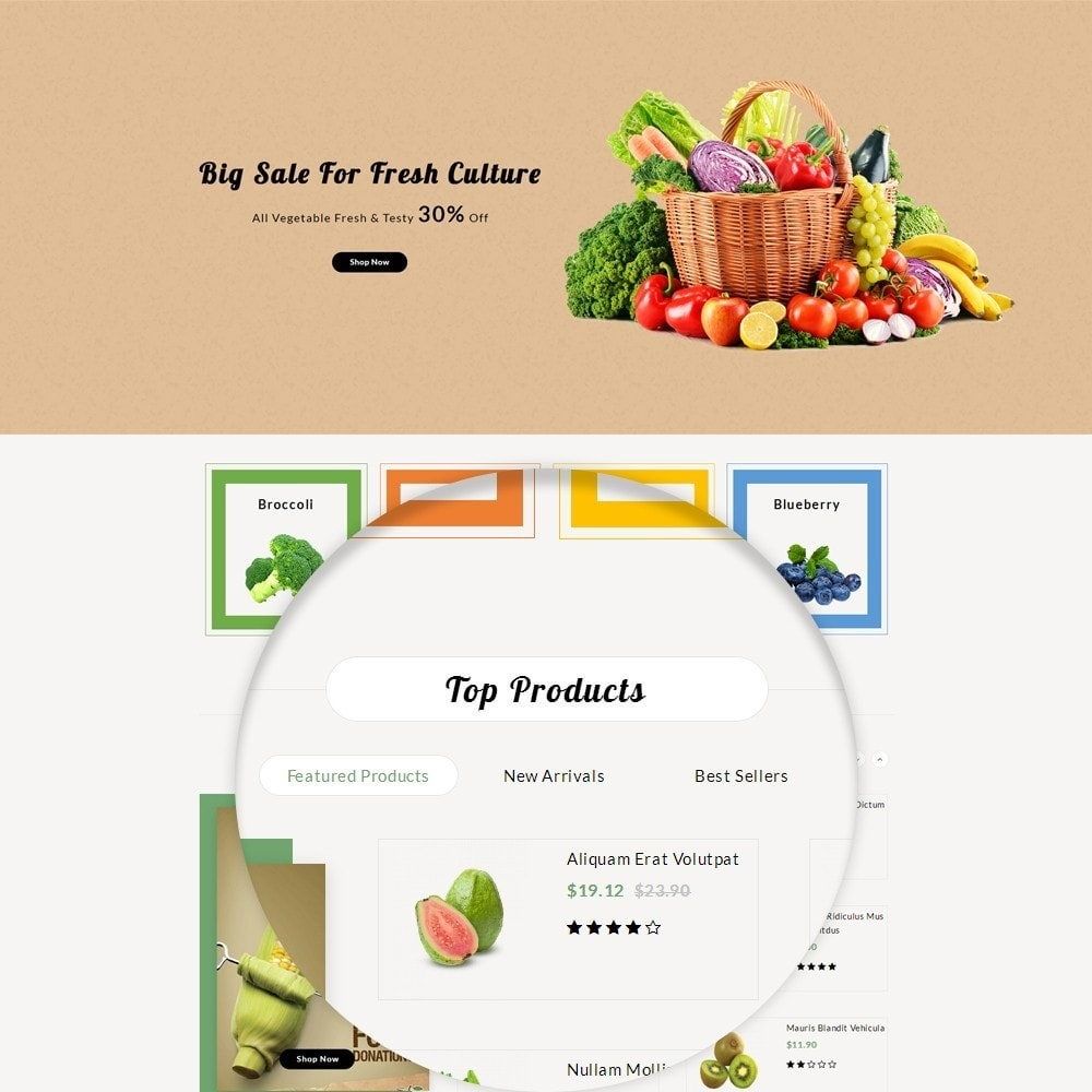 theme - Alimentation & Restauration - Fresh Culture Organic Store - 8