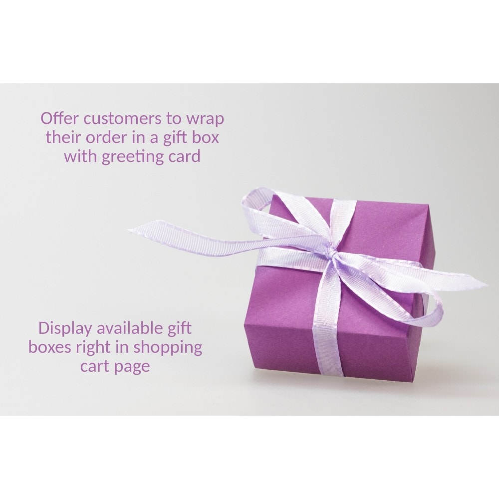 module - Pop-up - Popup with Gift Wrapping Options on Checkout - 1