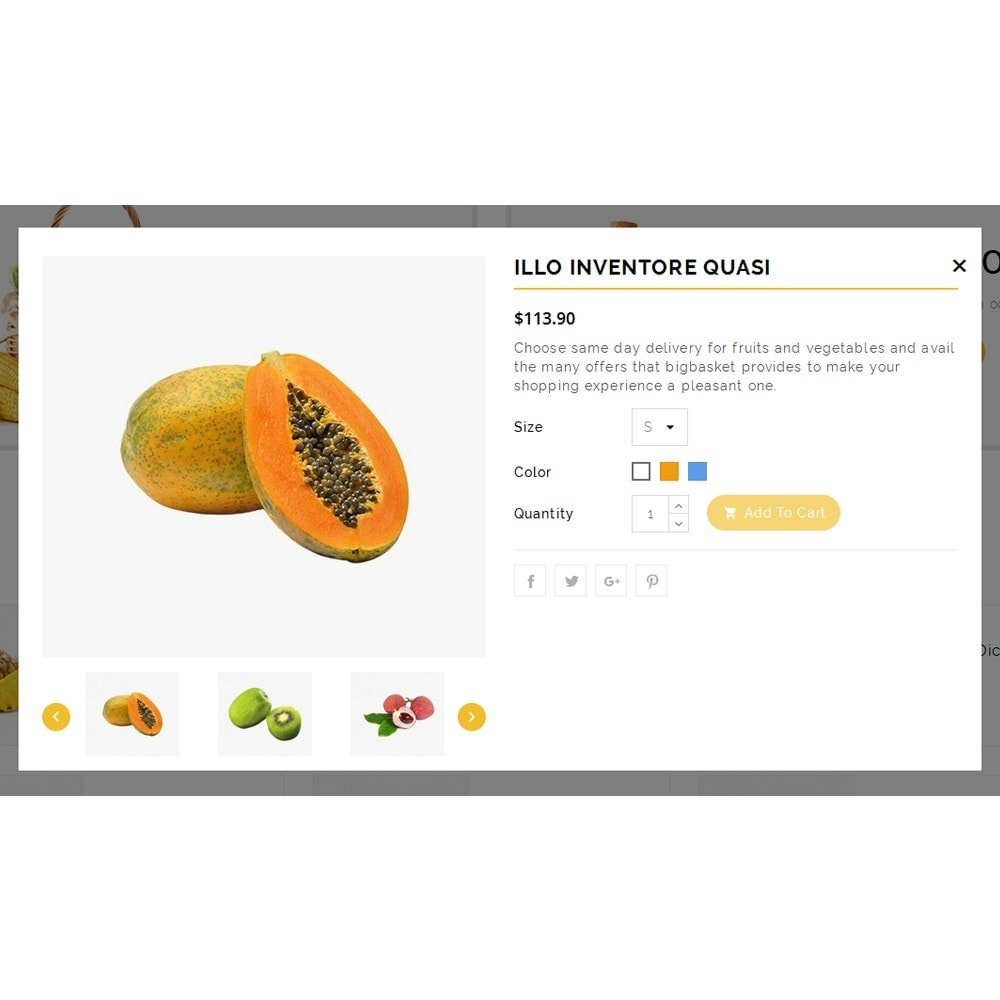 theme - Alimentation & Restauration - Vegam Store - 7