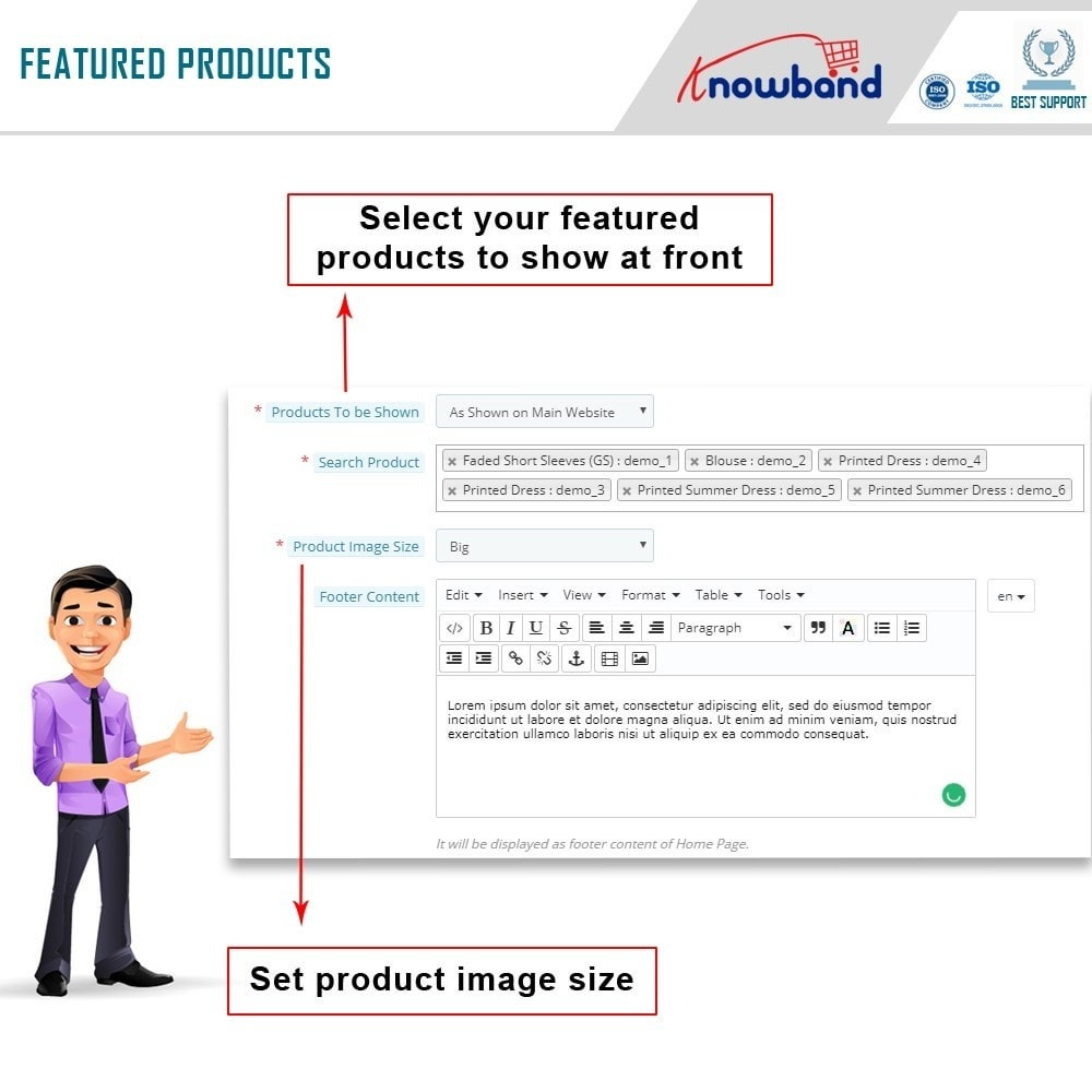 module - Produkten op Facebook & sociale netwerken - Social Shop Integrator - 8