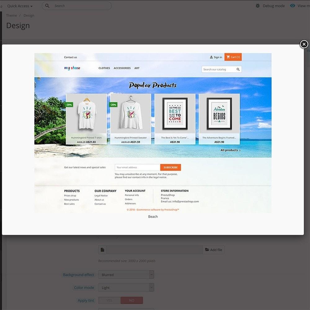 module - Individuelle Seitengestaltung - Classic Theme Customizer - 5