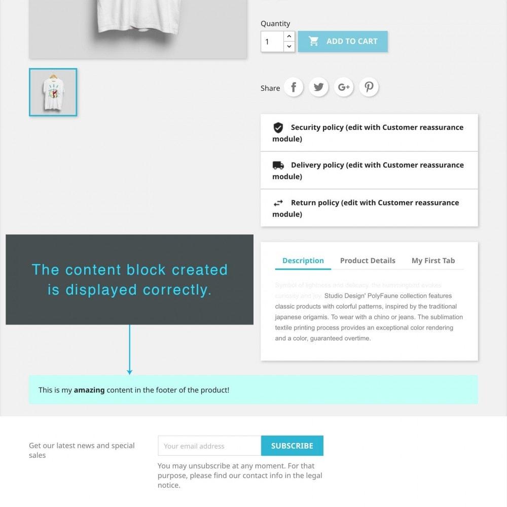 module - Altre informazioni & Product Tab - Product Extra Content - 8
