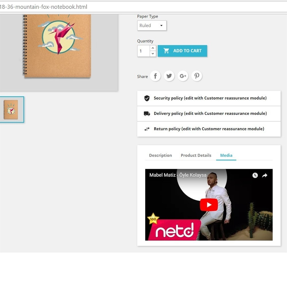 module - Videos & Music - Product Media and Audio (Youtube / Audio / Custom HTML) - 1
