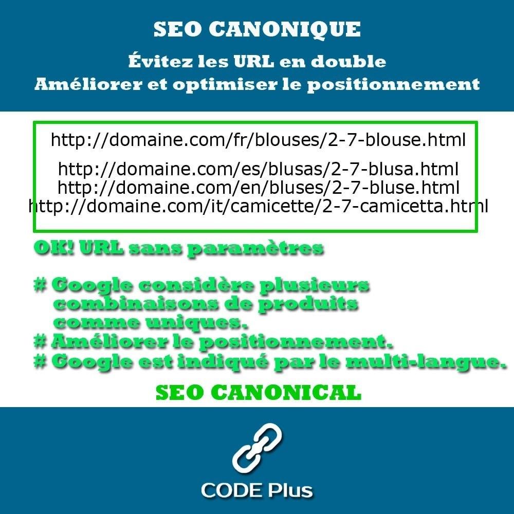module - SEO (référencement naturel) - SEO Canonicas + Hre flang - 4