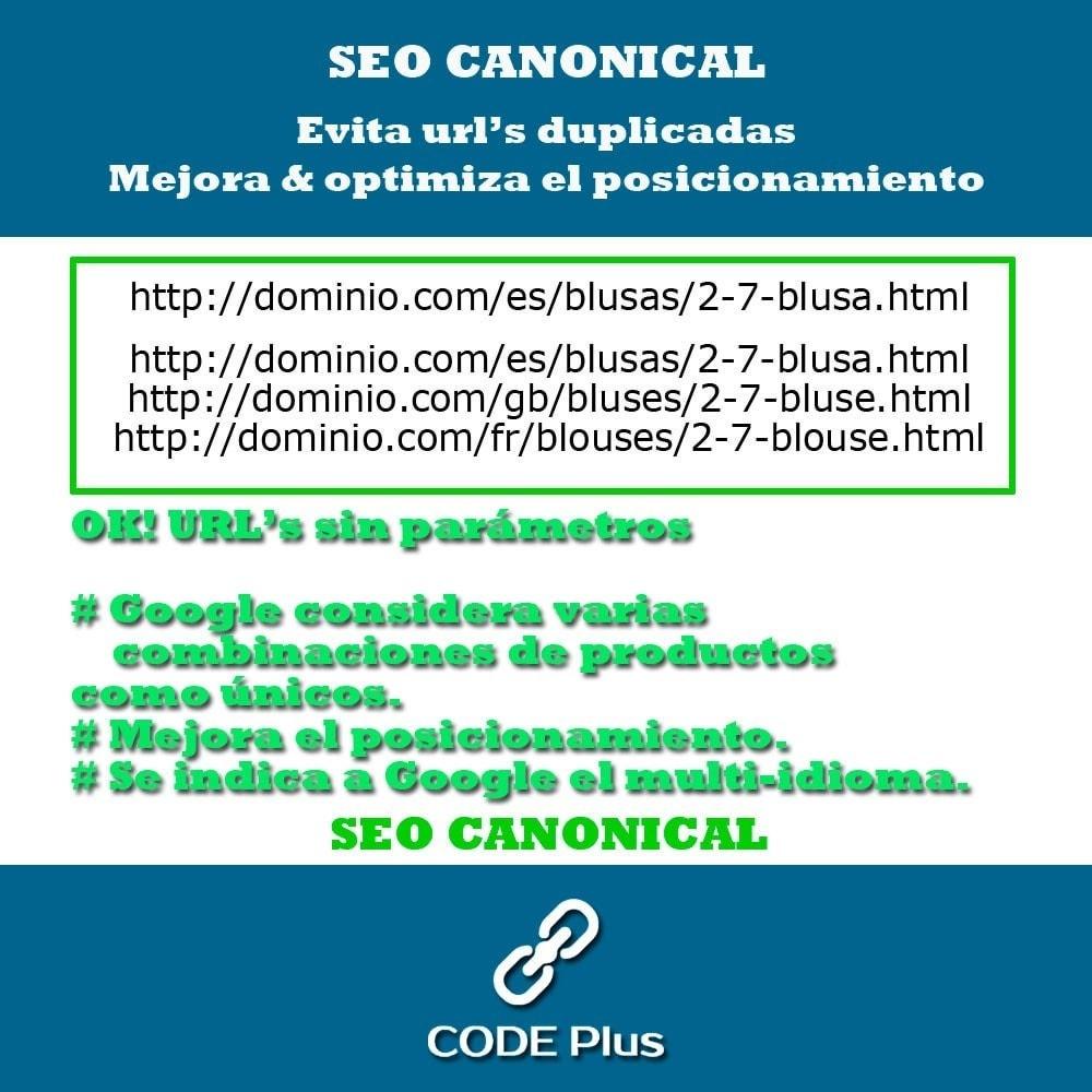 module - SEO (Posicionamiento en buscadores) - SEO Canonicas + Hre flang - 4