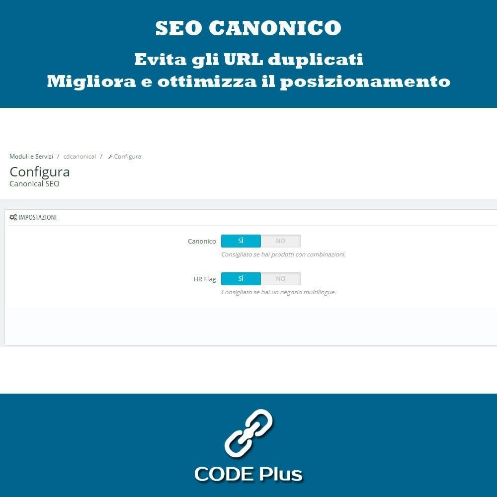 module - SEO (Indicizzazione naturale) - Canonicas SEO + Hre flang - 2