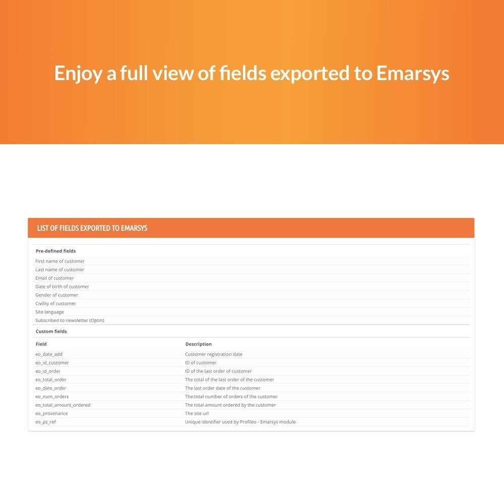 module - Remarketing & Opuszczone koszyki - Emarsys - 6