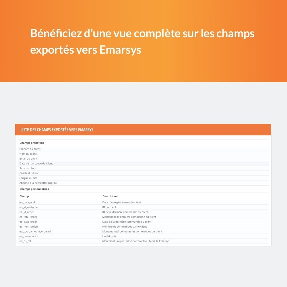 module - Remarketing & Paniers Abandonnés - Emarsys - 6