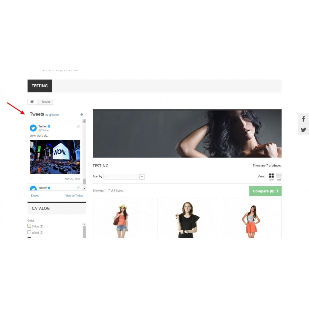 module - Widgets para redes sociales - Tweet Feed, Twitter Timeline Widget - 4