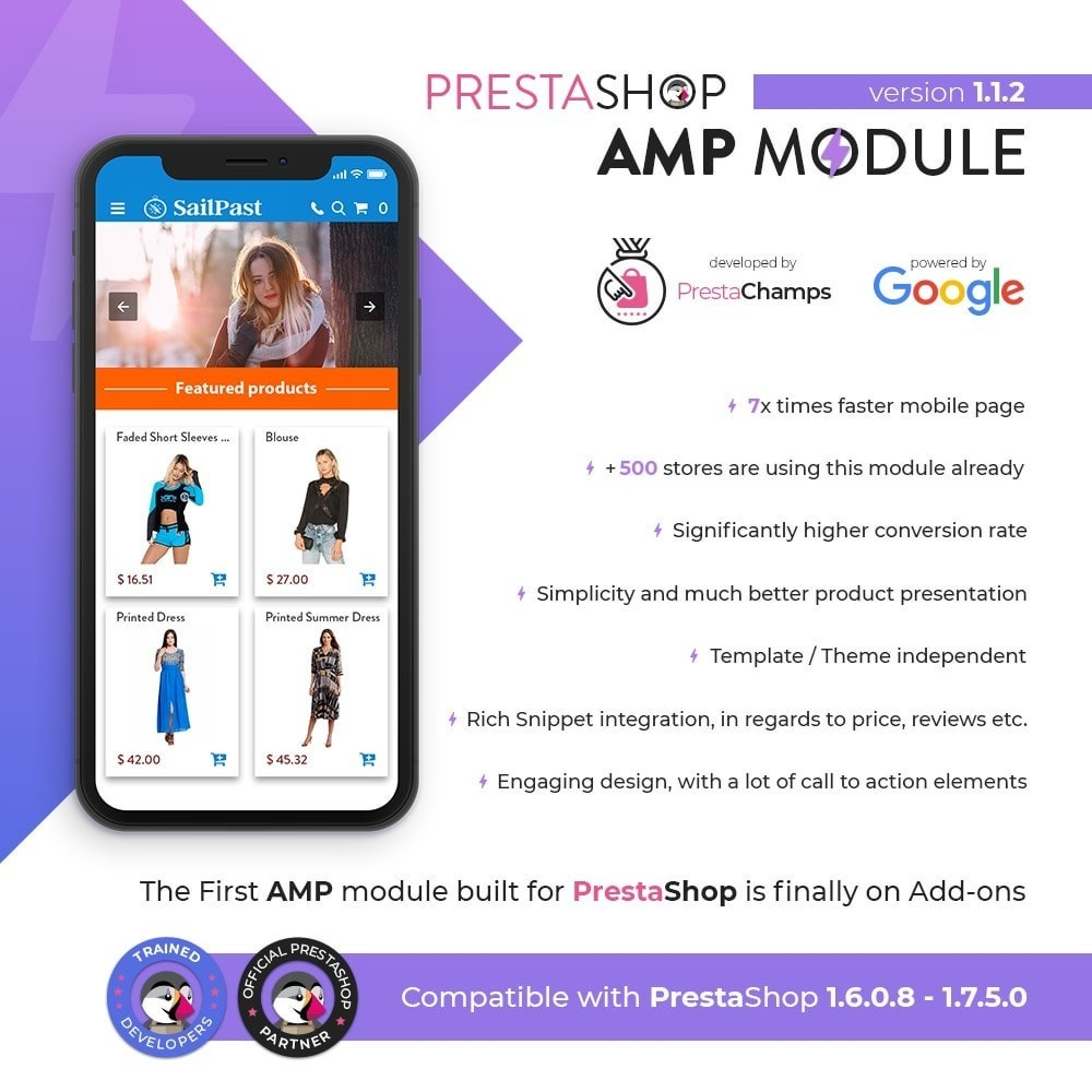 module - Website Performance - PROFESSIONAL AMP PAGES - ACCELERATED MOBILE PAGES - 1