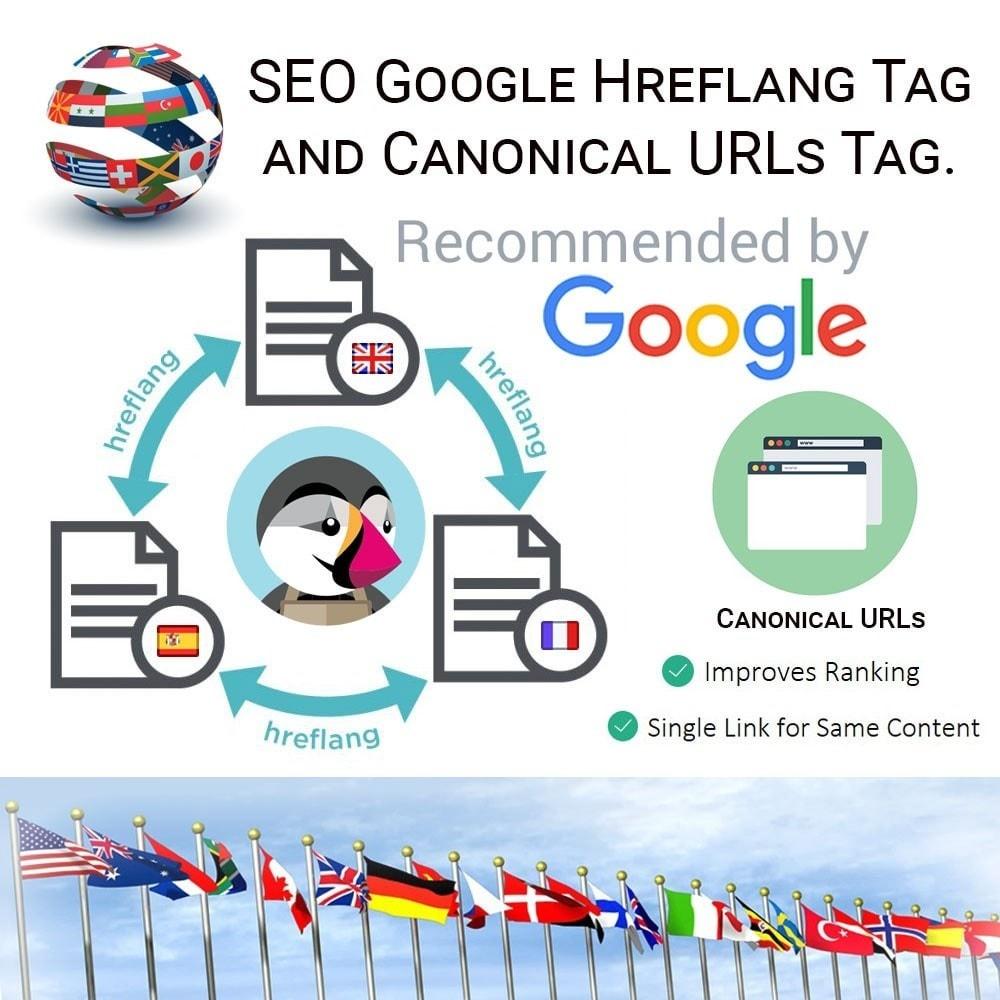 module - Управления адресами URL и перенаправлением - SEO Google Hreflang теги и тег Канонических URL - 1