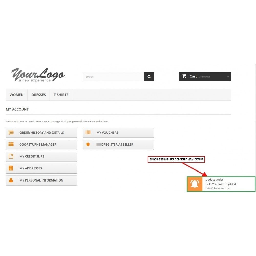module - Promotion & Geschenke - Web Push Notification - 5