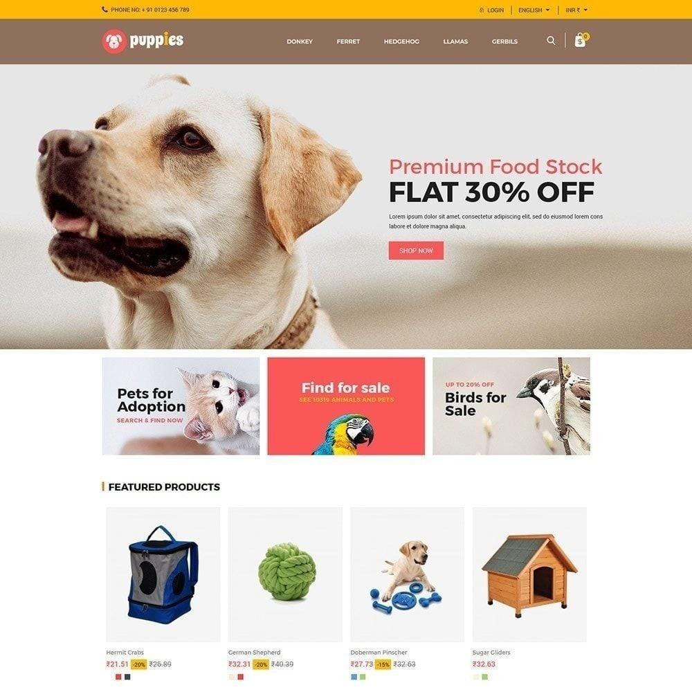 theme - Animals & Pets - Puppy Pet - Cat Animal Store - 1