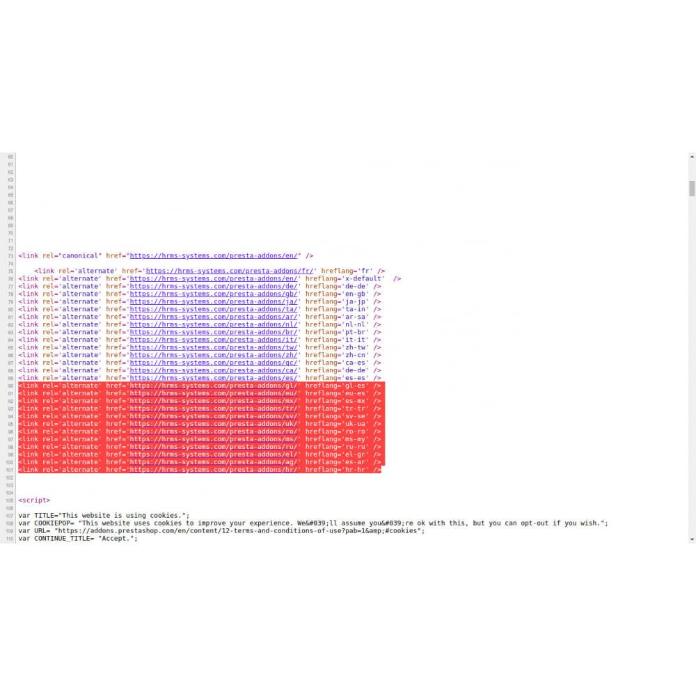module - SEO (Indicizzazione naturale) - Tag hreflang e canonici su tutte le pagine - 2