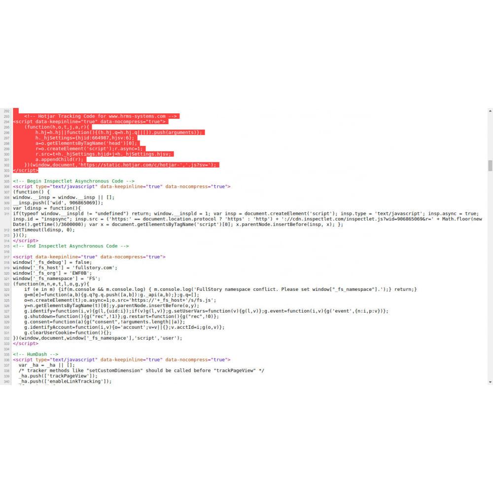 module - SEO (Posicionamiento en buscadores) - HTML personalizado, CSS, JS en páginas seleccionadas - 1