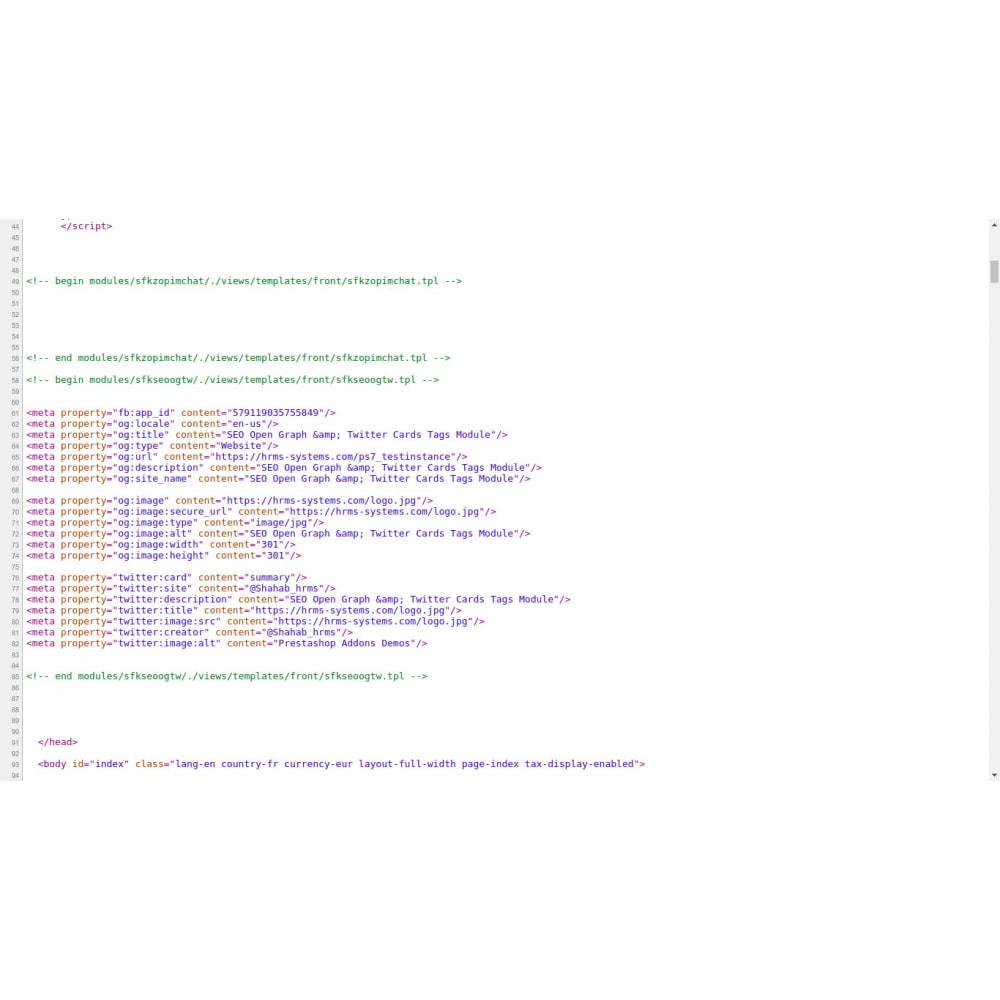 module - SEO (Referenciamento natural) - Gerador de Tags SEO Graph & Twitter Card Open - 1