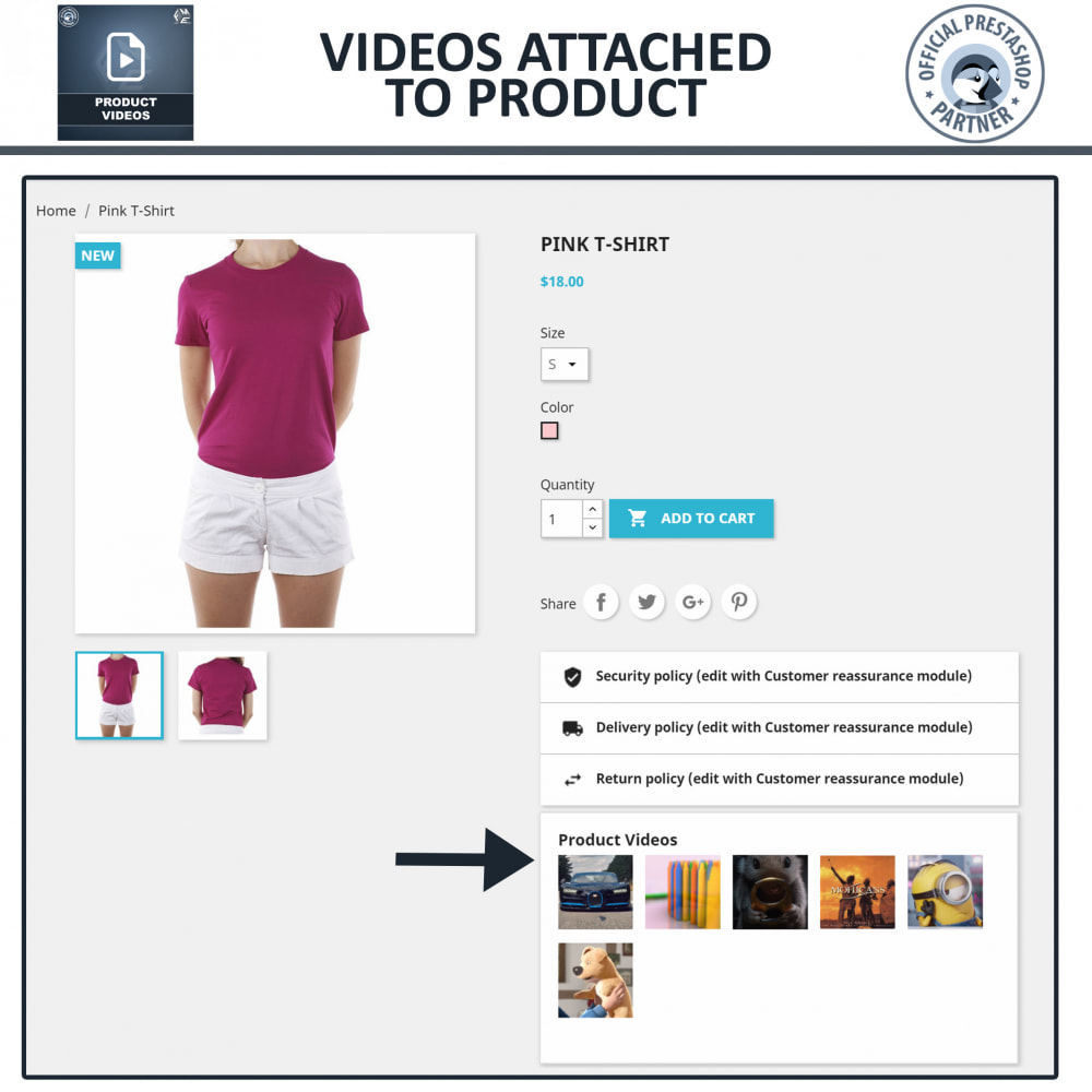 module - Videos & Music - Product Videos - YouTube, Vimeo   Upload or Embed - 7