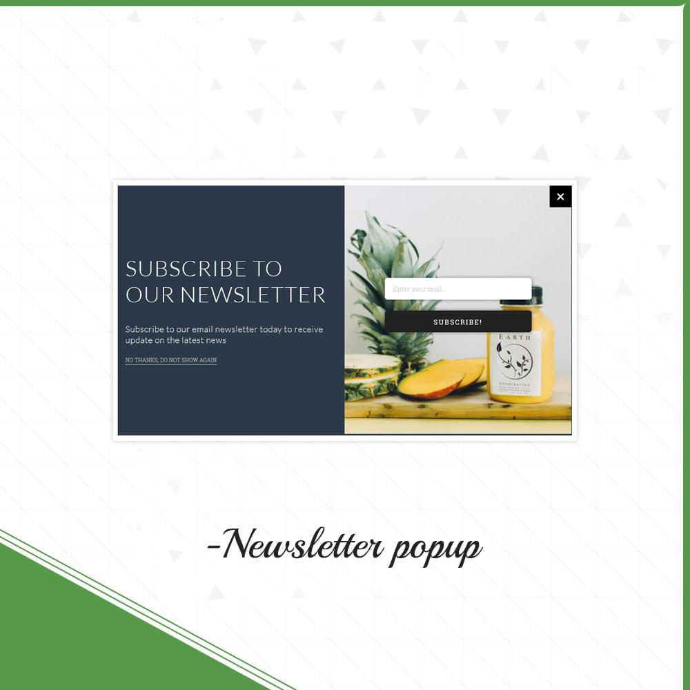 theme - Żywność & Restauracje - Envioly Grocery –Organic Store - 10