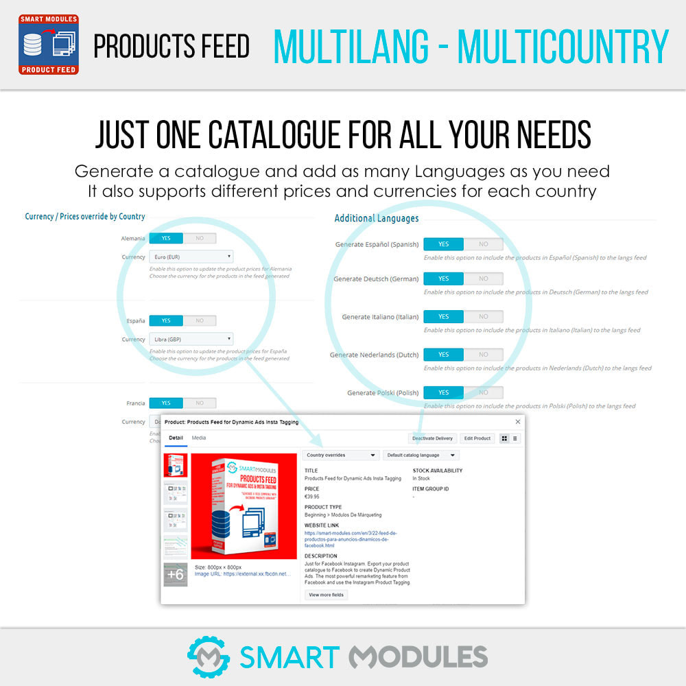 module - SEA SEM (paid advertising) & Affiliation Platforms - Products Feed: Dynamic Ads & Shop & Tagging - 3