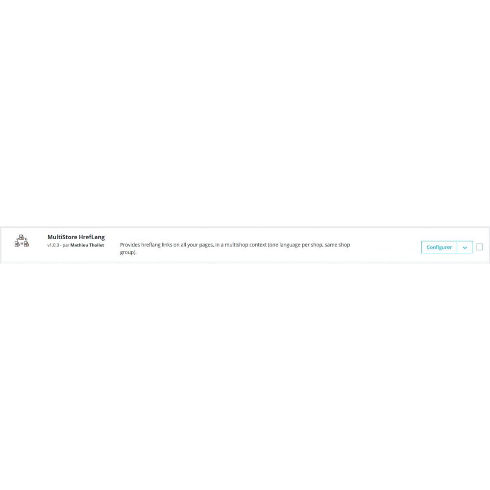 module - SEO (référencement naturel) - HrefLang Multi Boutique - 1