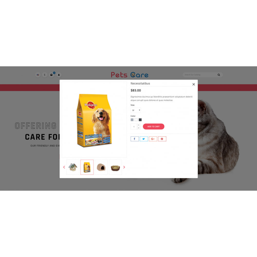 theme - Animaux - Pets Care - Animals Store - 7