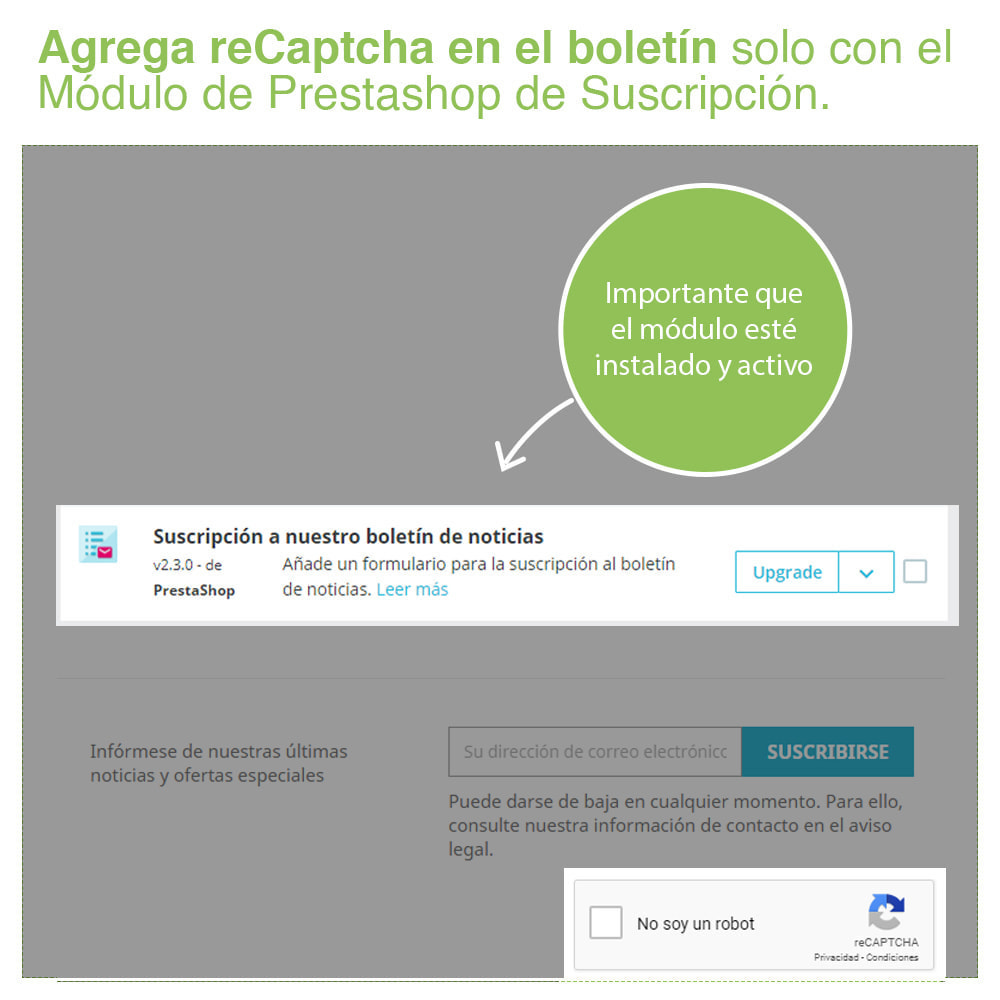 module - Seguridad y Accesos - Captcha - reCaptcha – Protección Anti Spam - 5