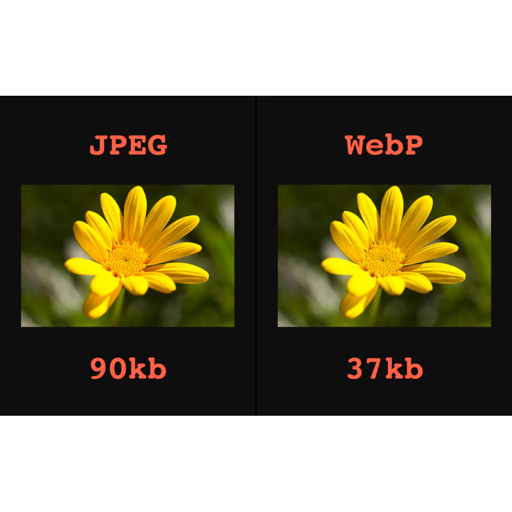 module - Produktvisualisierung - Bildbearbeitungsmodul: WebP, Bilderkomprimierung - 2