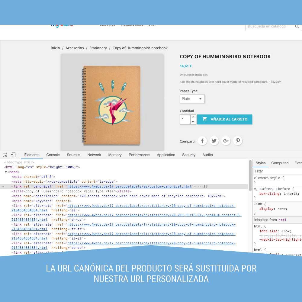 module - URL y Redirecciones - Canonical SEO - 4