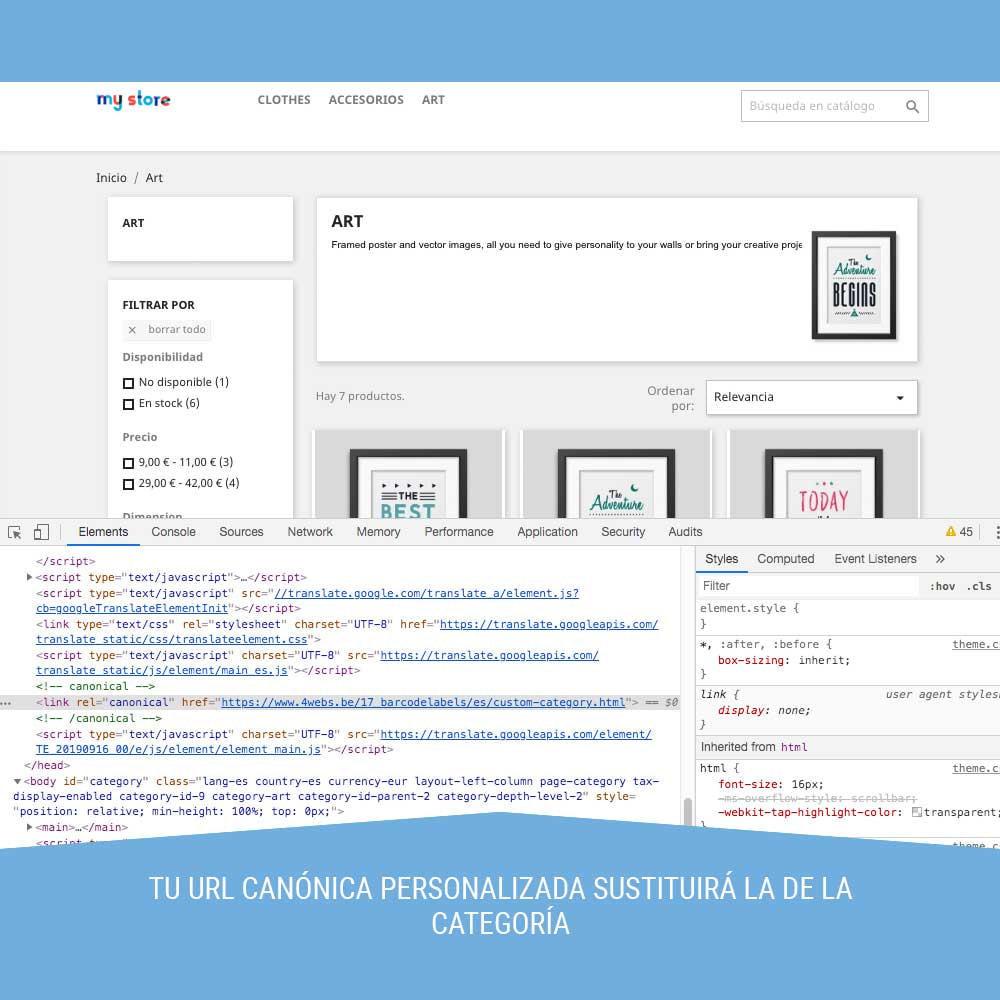 module - URL y Redirecciones - Canonical SEO - 6