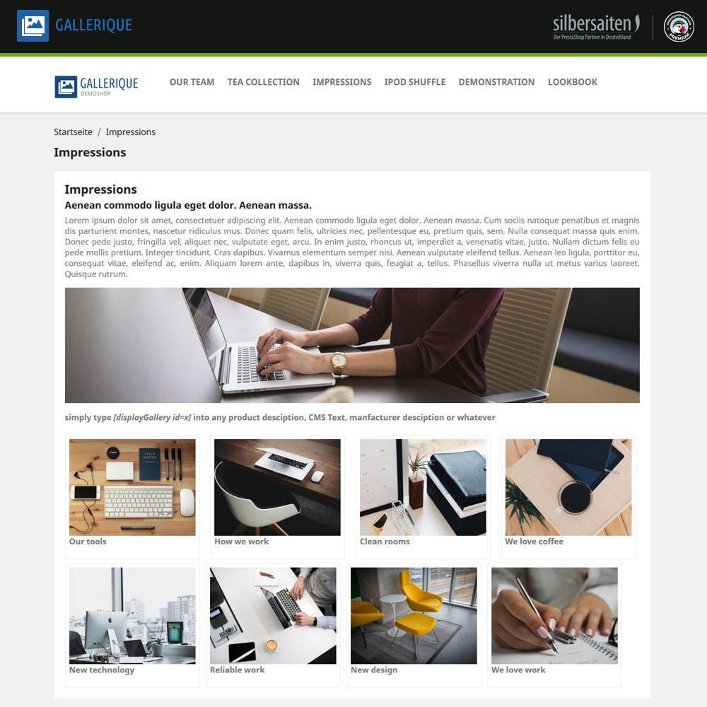 module - Slider & Gallerie - Gallerique - gallerie di immagini con numerosi album - 2