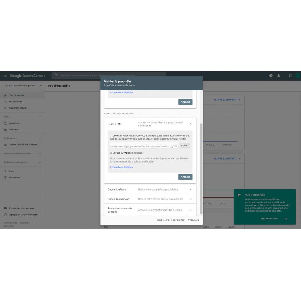 module - SEO (Pozycjonowanie naturalne) - google webmaster tool - 2
